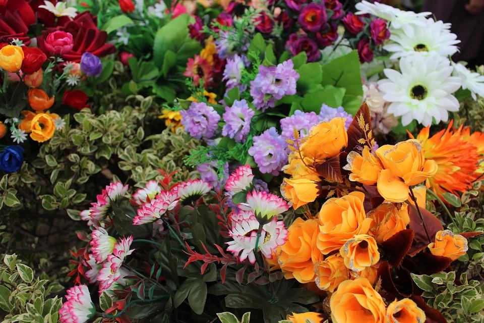 Flowers, Orange Flower, Blue Flower, Rose, Pink Rose