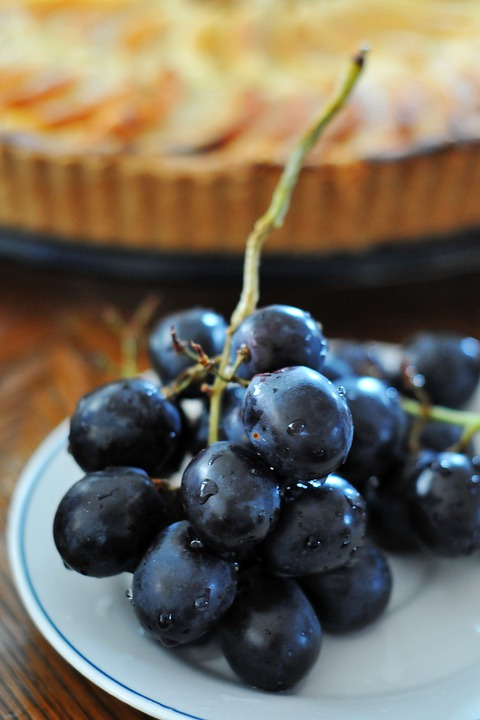 Grapes, Blue, Fruit, Food, Berry, Healthy, Dessert