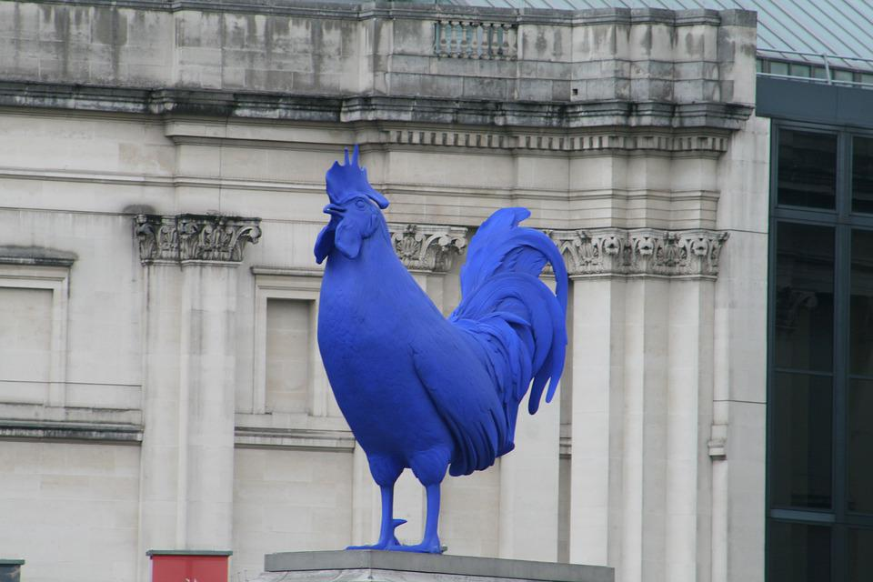 Cock, London, Blue