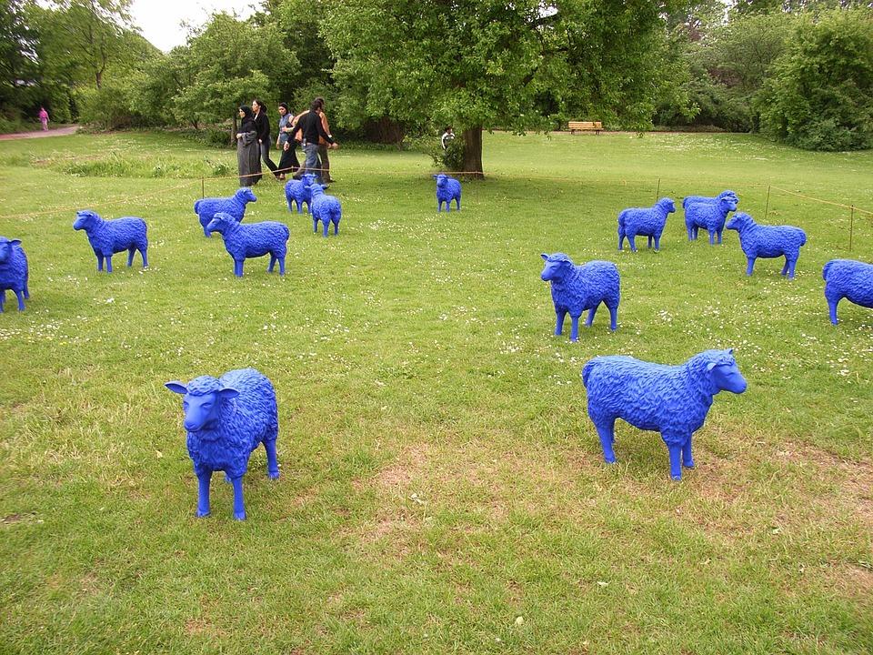 Sheep, Blue, Blue Sheep, Artificial, Field, Lamb