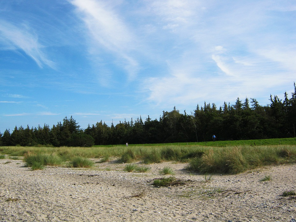 Baltic Sea, Beach, Sky, Blue, Dunes, Edge Of The Woods