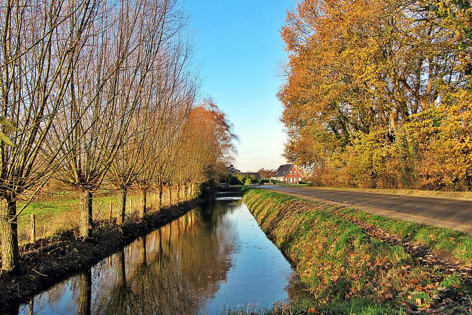 Willow, Ditch, Blue Sky, Fall Colors, Netherlands