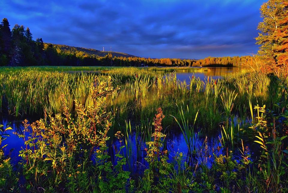 Landscape, Sky, Colors, Marsh, Lake, Blue