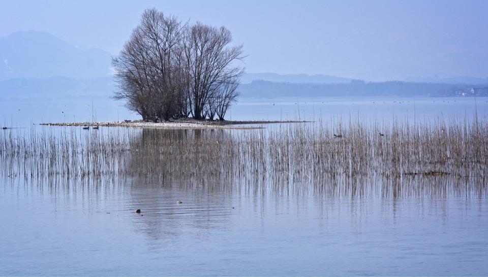 Bank, Beach, Stones, Nature, Water, Lake, Blue, Sky