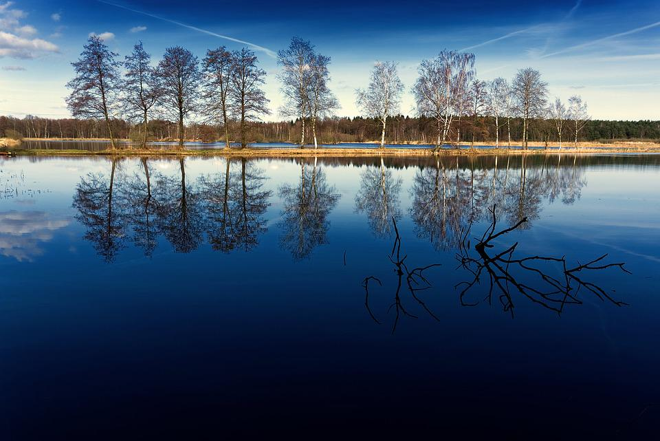 Water, Trees, Landscape, Blue, Spring, Sky, Nature