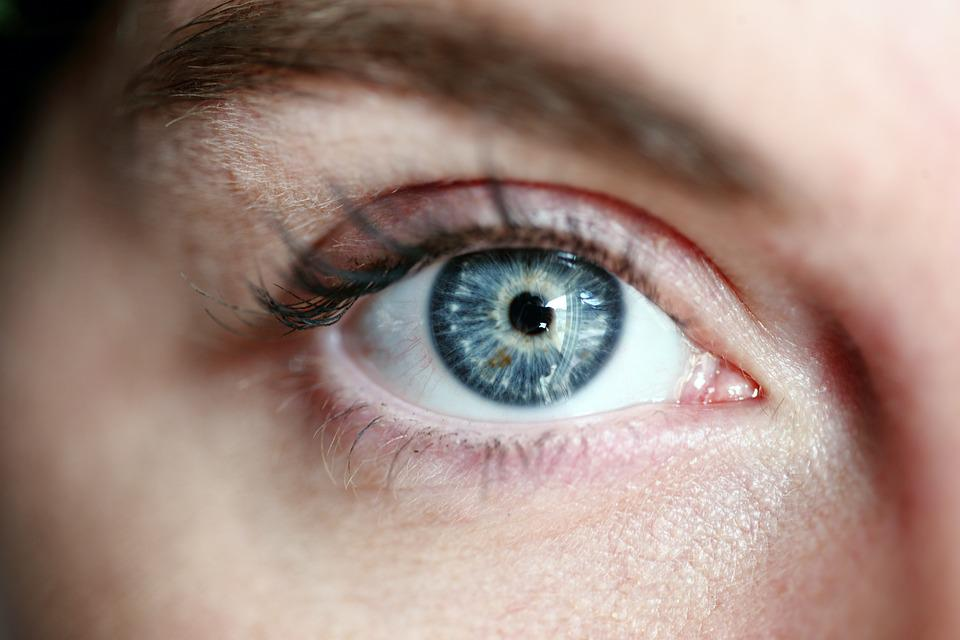 Eye, Blue Eye, Woman, Eye Lashes, Portrait, Face, Blue