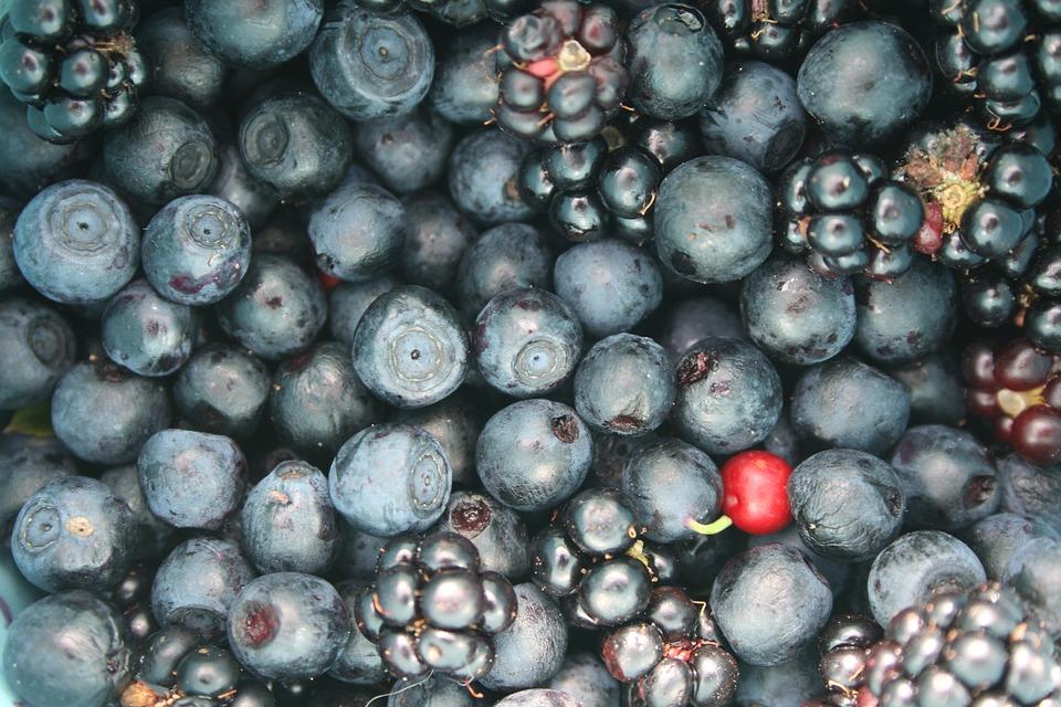 Fruit, Berries, Jagoda, Blueberries, Blackberries