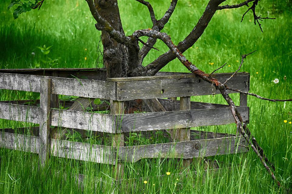 Fence, Wood, Protection, Boards, Background