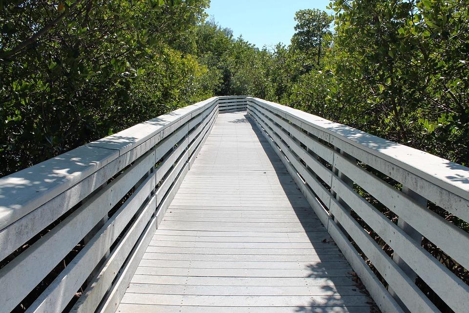 Boardwalk, Deck, Perspective, Wood, Texture, Pattern
