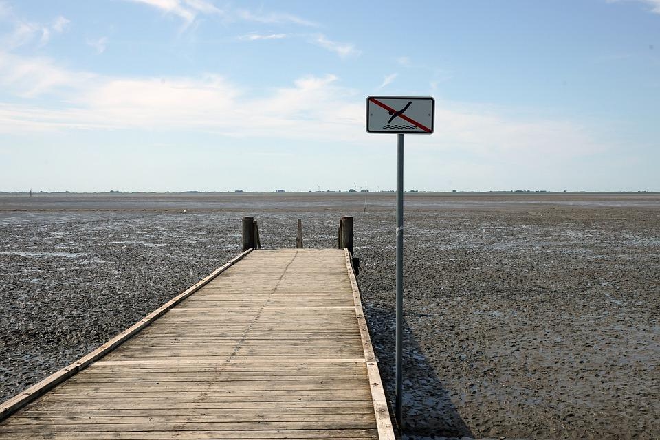 Jetty, Coast, Low Tide, Sea, Ebb, Shore, Boardwalk