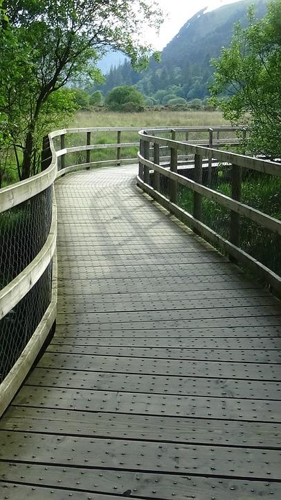 Boardwalk, Wavy, Planks, Handrail