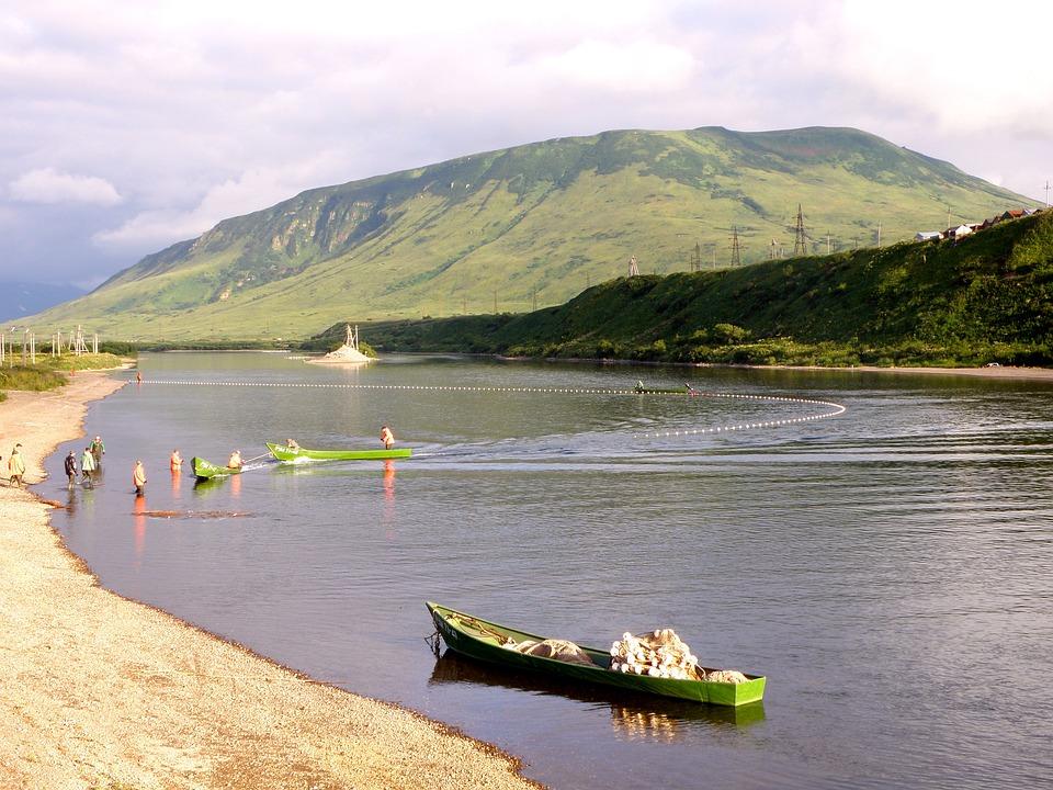 Fishing, Trade, Fishermen, Net, River, Catch, Boat