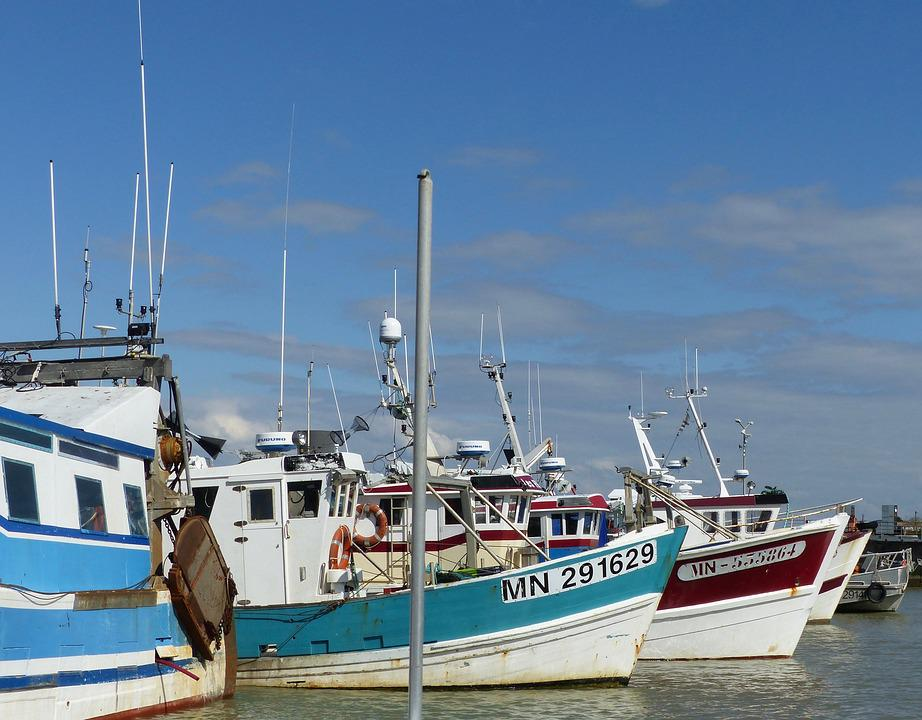 Port, Fishing, Fishing Port, Sea, Boat