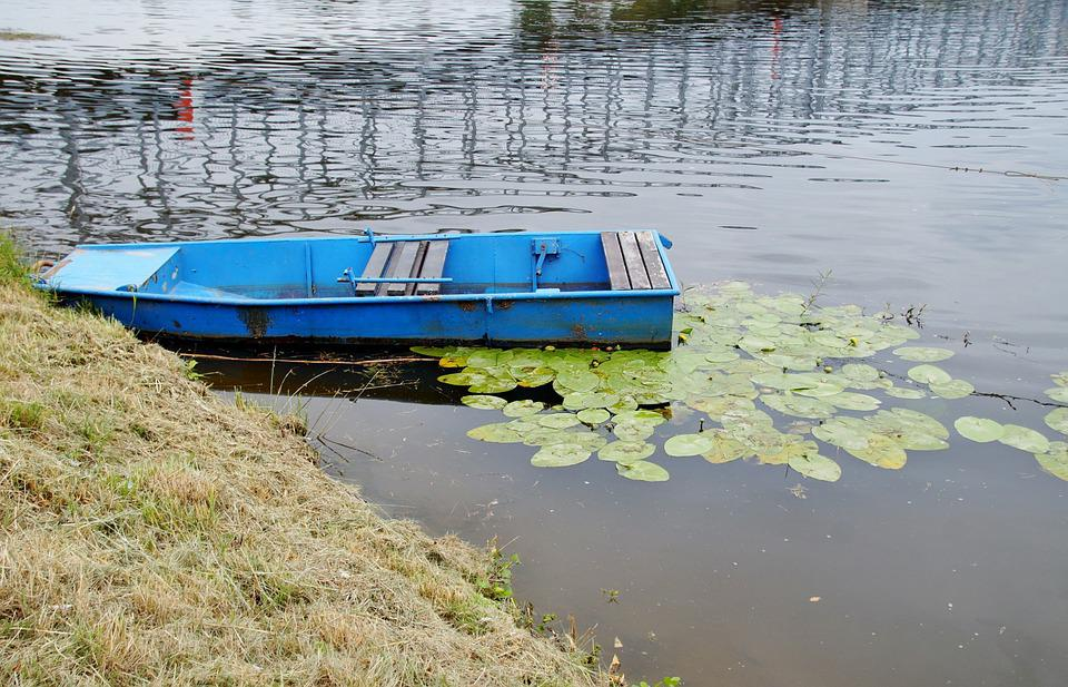 Rowboat, Blue, Boat, Punts, River