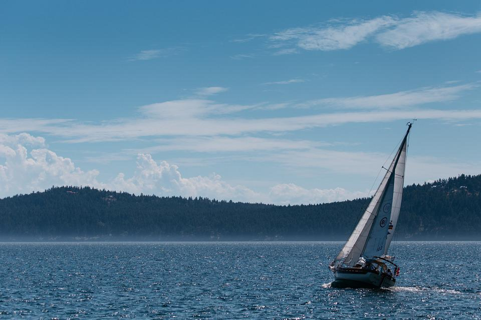 Sail, Sailor, Boat, Woods, Wild, Wilderness, Lake