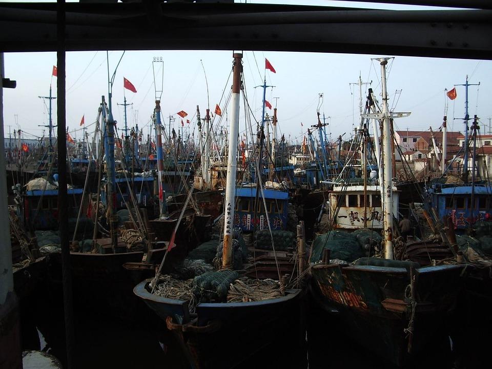Boats, Fishing, Masts, Dock, Harbour, Vessel, Nautical
