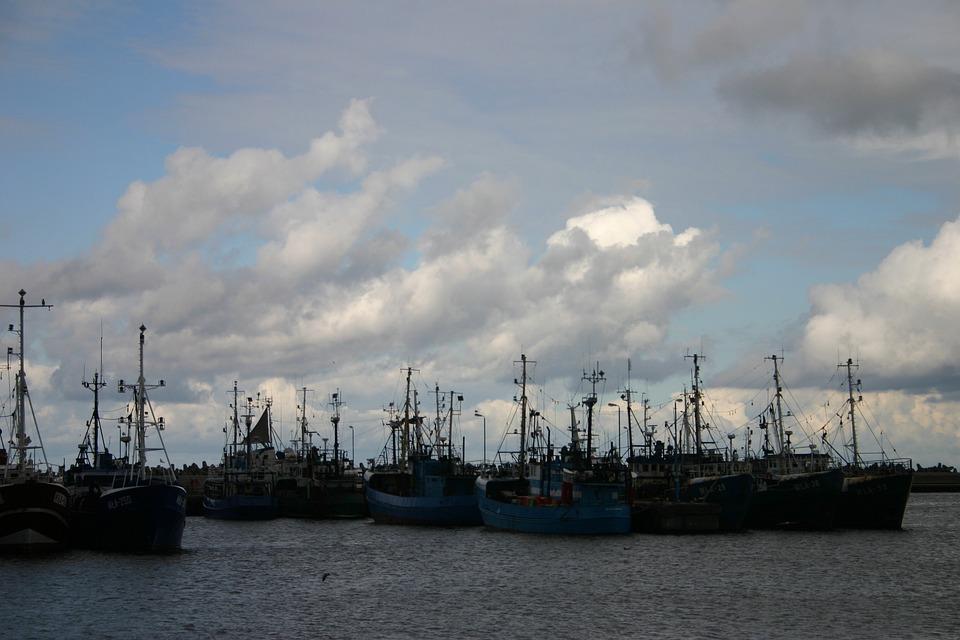 Port, Fishing Vessels, Sea, Boats