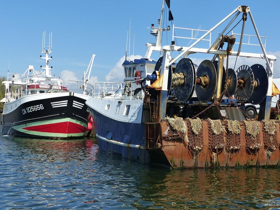 Trawlers, Boats, Fishing Boats, Sea, Port, Fishing