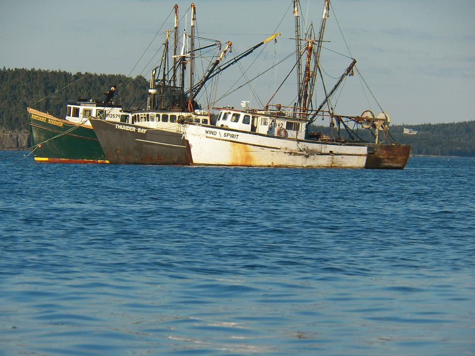 Lobster, Lobsters, Lobster Boat, Boats, Vessel, Vessels