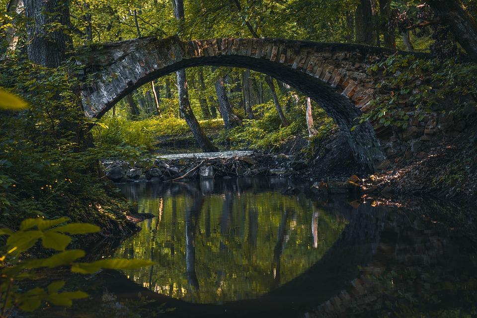 Bridge, River, Bobrava, Natural Park, Trees