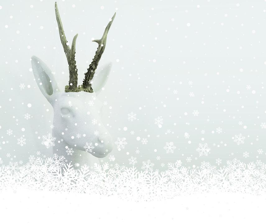 Christmas, Snow, White, Map, Bock, Marble, Art