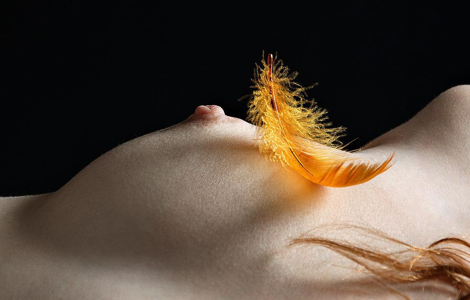 Breast, A Feather, Closeup, Beauty, Body, The Act Of