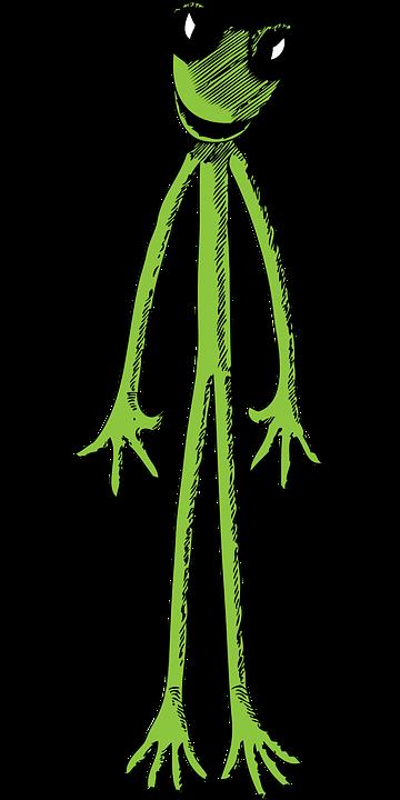 Eyes, Frog, Body, Strange, Long, Skinny