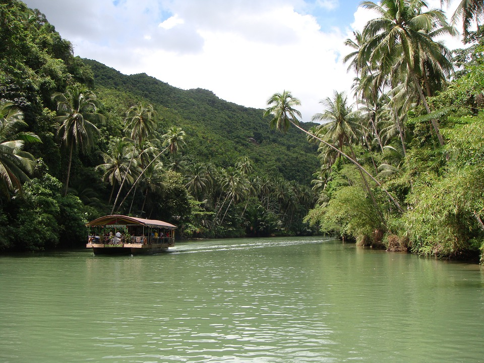 Rain Forest, Bohol, Philippines, River, Boat