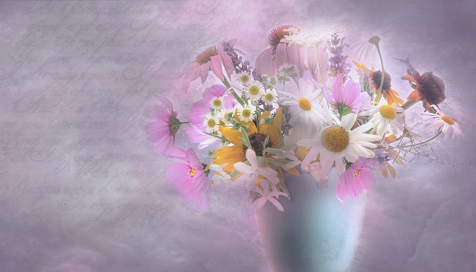 Garden, Purple, Flowers, Macro, Bokeh, Flower, Romantic