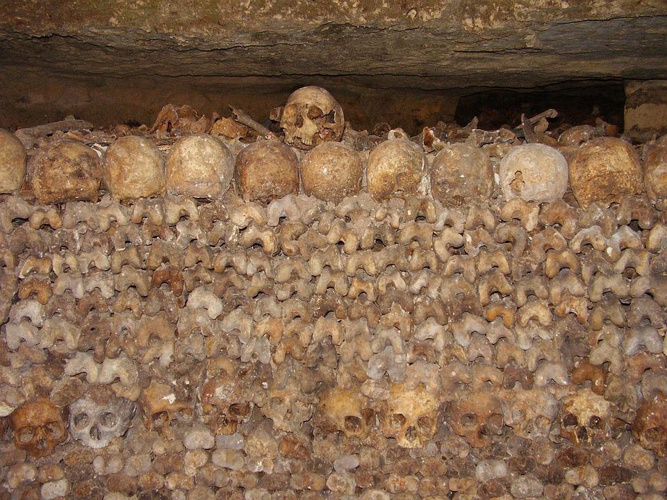 Catacombs, Skulls, Bone, Bones, Crane, Skeleton, Death
