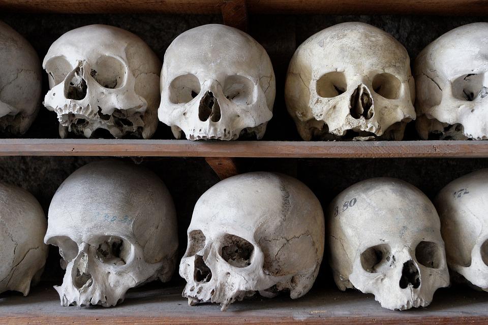 Free photo Bone Cranium Anatomy Ossuary Frame Skull - Max Pixel