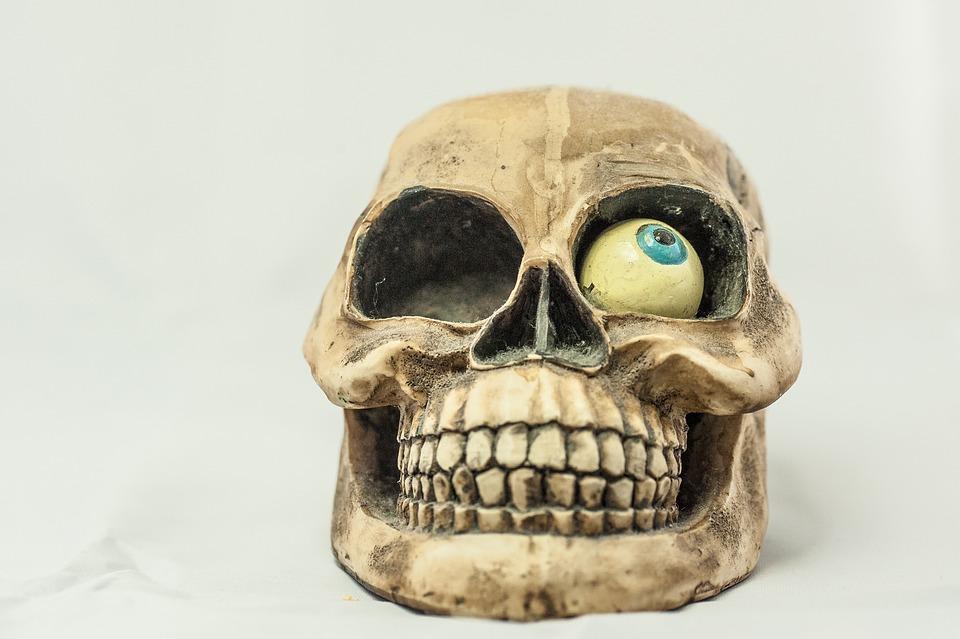 Free Photo Bone Skull And Crossbones Eye Skull Tooth Max Pixel