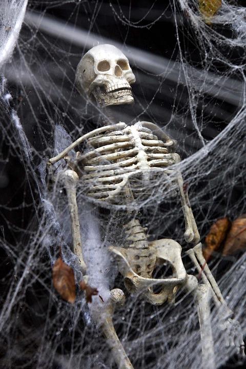 Halloween, Celebration, Party, Skull, Bones, Death