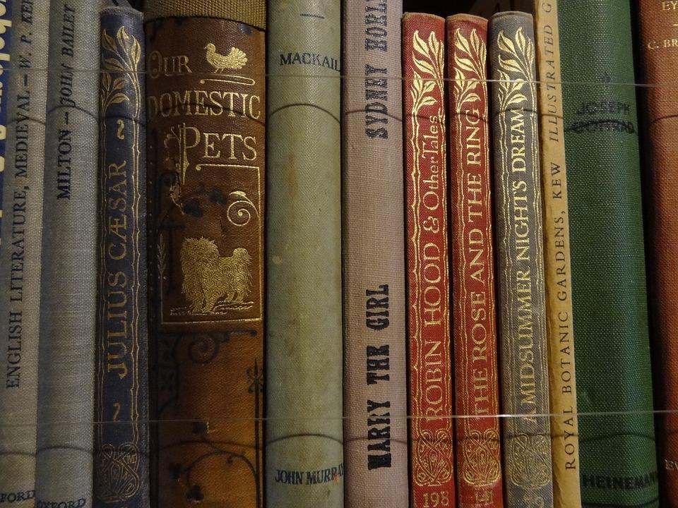Book, Library, Books, Literature, Antique Store