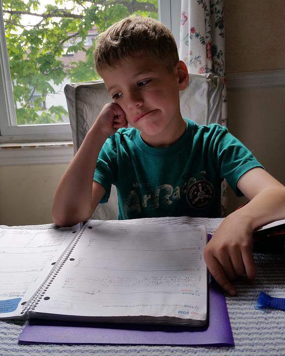 Homework, Boy, Child, Student, Learning, Book, Kid