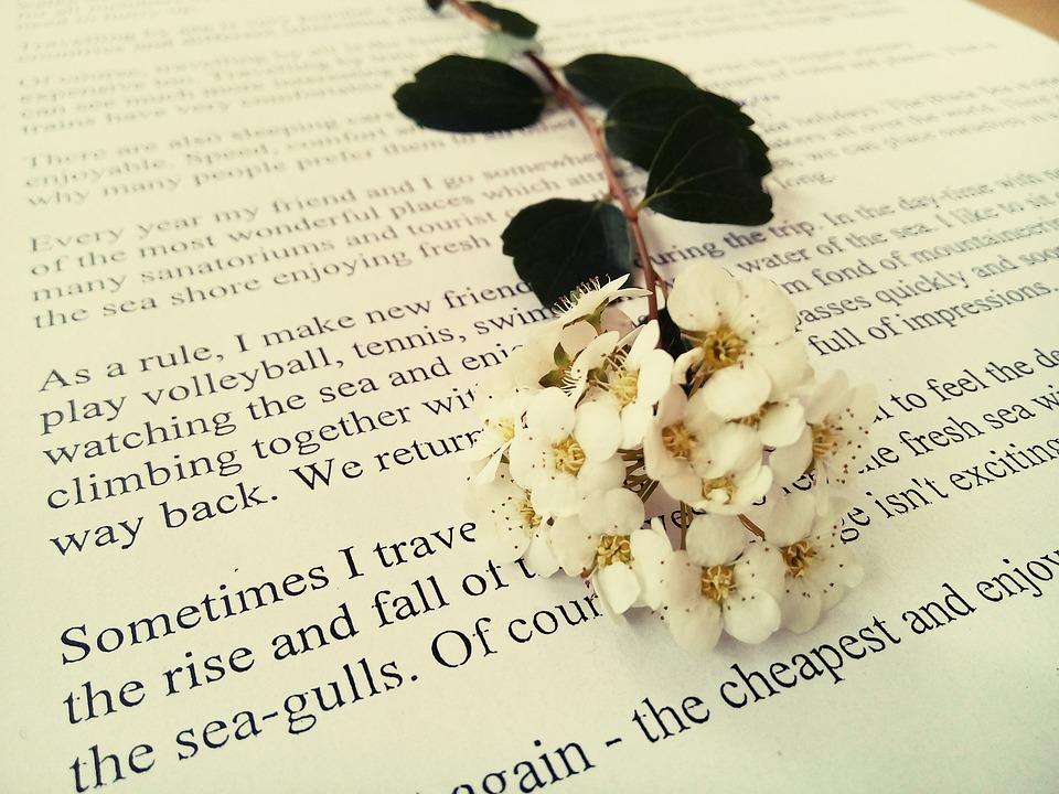 Flower, Book, White, Natural