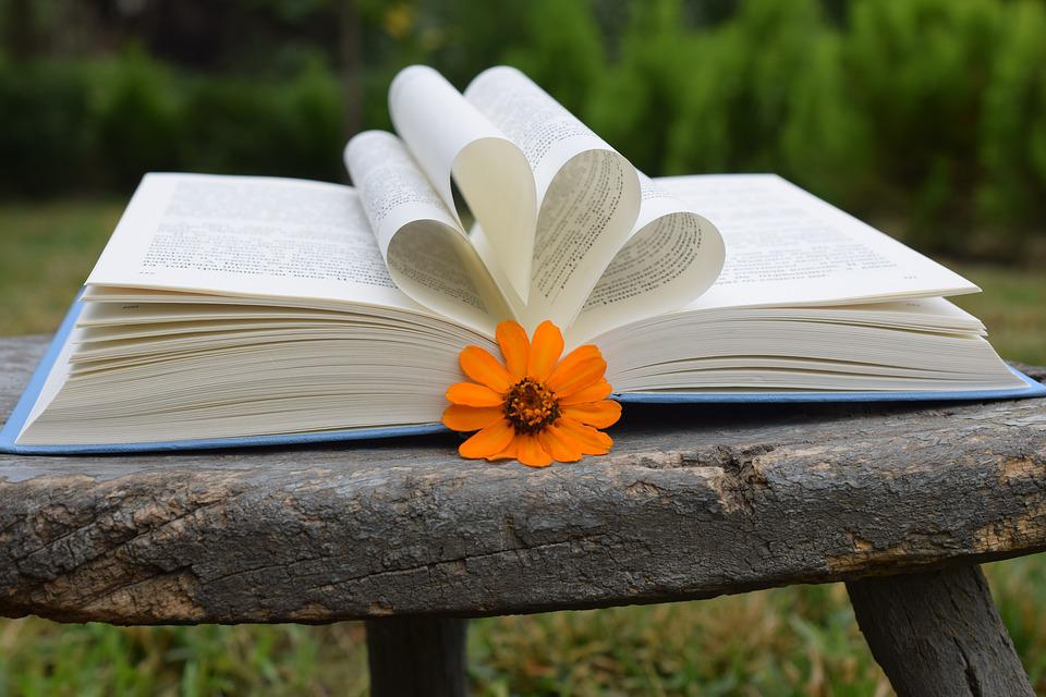 Book, Flowers, Orange, Out