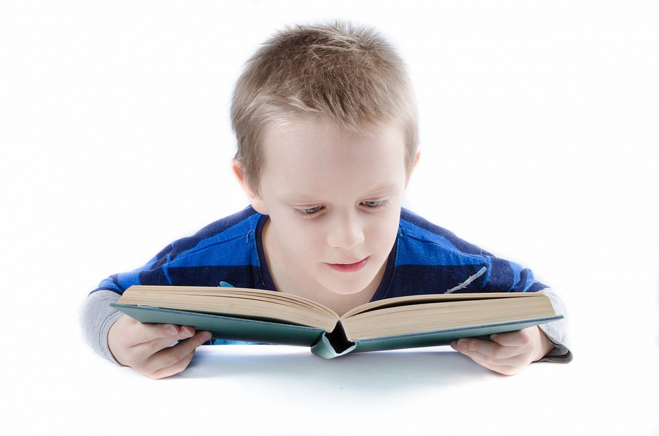 Read, Book, Boy, Child, Kid, Student, Think, Teen, Test