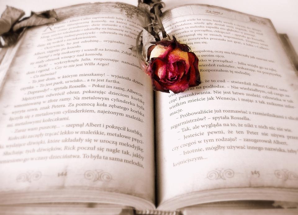 Free photo Book Roman Love Story Novel Story Rose Reading - Max Pixel