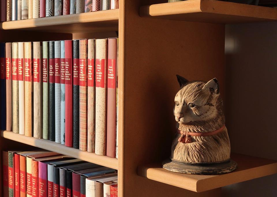 Book Shelf, Buchstütze, Books, Read, Cat, Literature