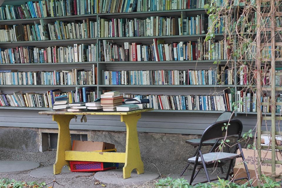 Books, Library, Shelf, Bookshelves, Book Store