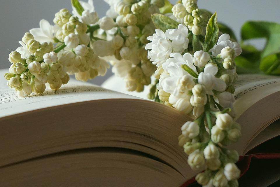 Book, Bookmark With Flowers, A Sprig Of White Lilac