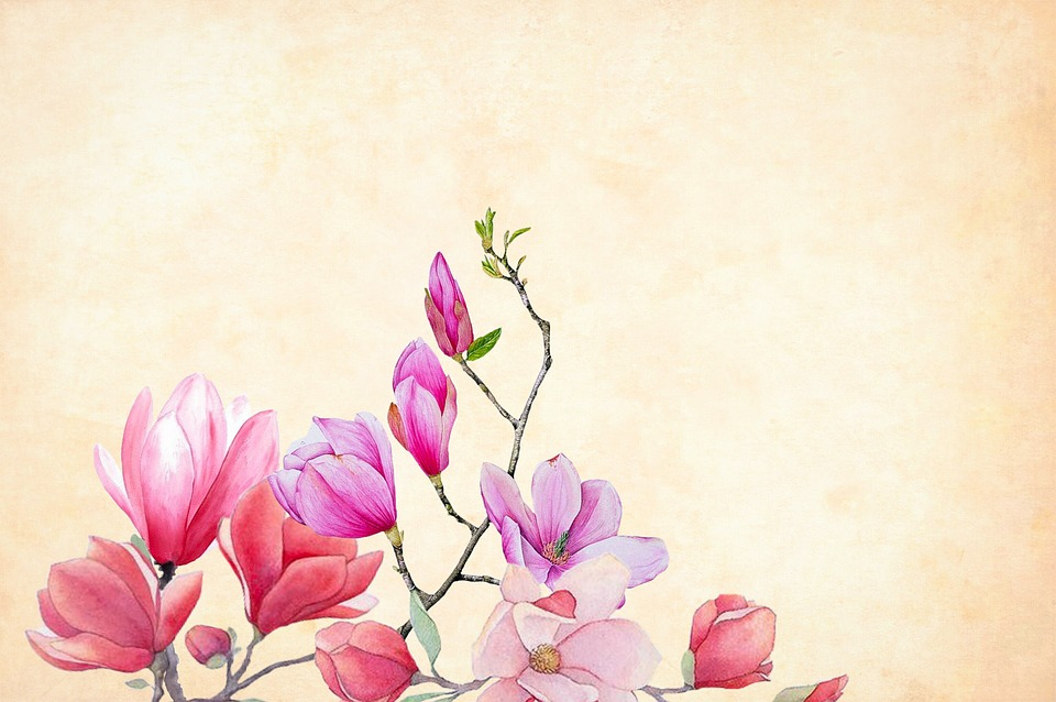 Free Photo Border Floral Background Watercolor Flower