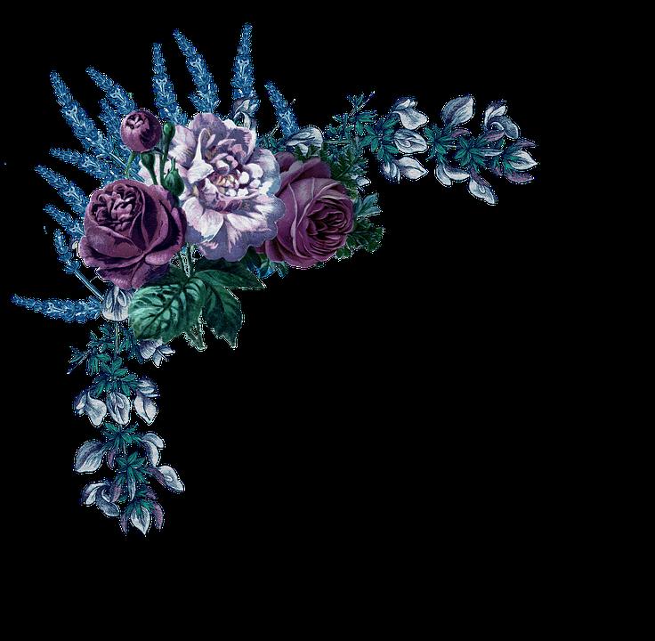 Roses, Vintage, Border, Lilac, Flowers, Leaves