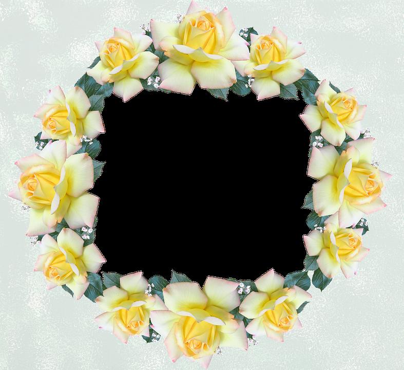 Frame, Border, Rose, Flower