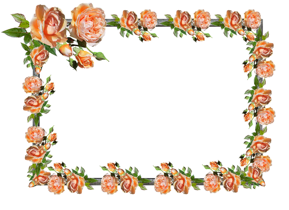 Frame, Border, Rose, Floral, Decoration