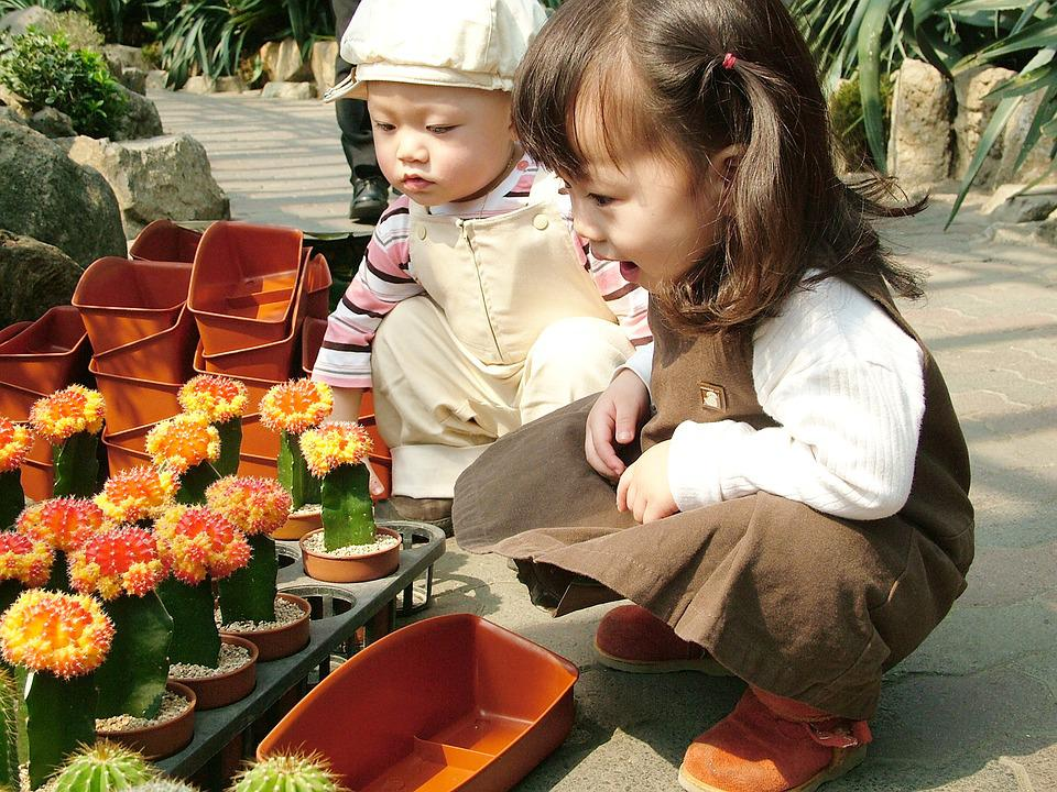 Outing, Botanical Garden, Children's, Baby Models