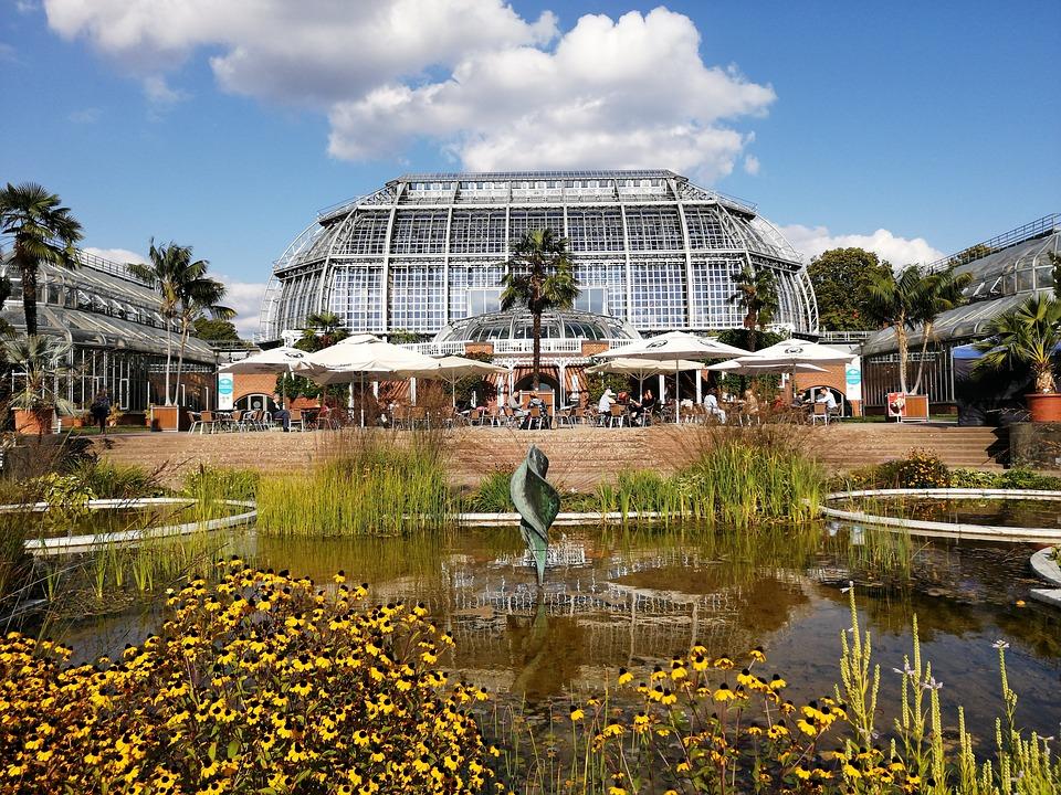 Berlin, Botanical Garden, Greenhouse, Nature