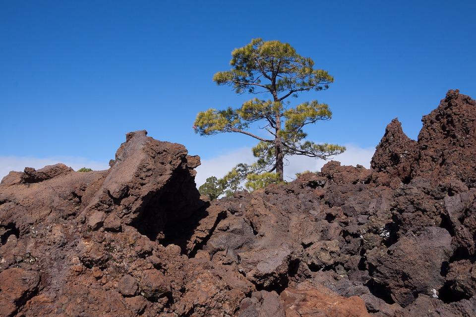 Lava, Lava Rock, Lava Fields, Boulders, Lunar Landscape