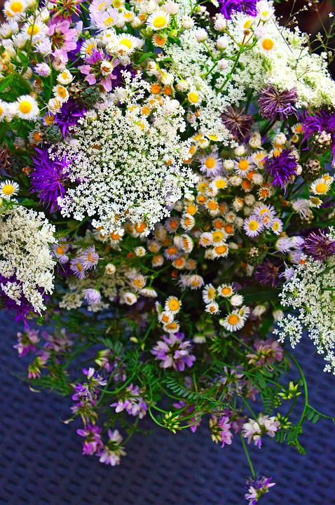 Color, Bouquet, Summer Flowers, Summer Bouquet, Nature